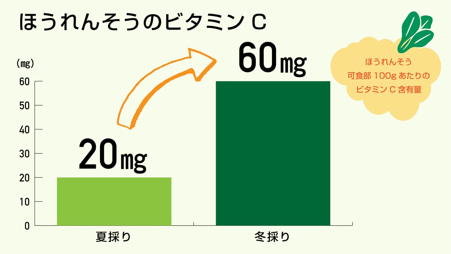 旬の野菜と、旬以外の野菜の栄養価の違い