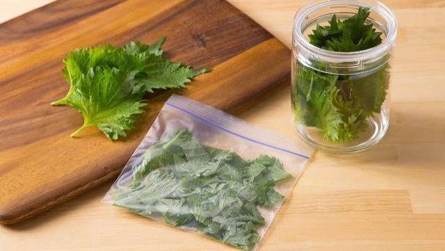 [野菜の保存]大葉(青しそ)の鮮度を長くもたせるには?
