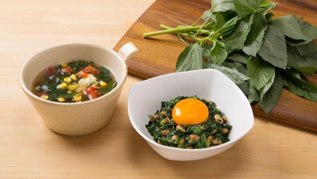 モロヘイヤの栄養価と、簡単モロヘイヤスープ&納豆和えの作り方
