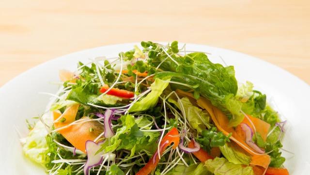 スプラウトは、種子と生長した野菜のいいとこ取り!
