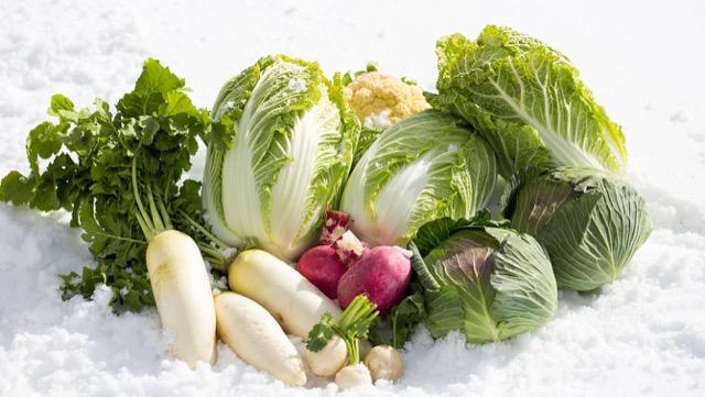 令人惊讶的?从秋天到冬天,萝卜和大白菜是咖喱中的流行食材