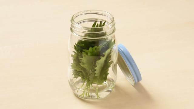 しそ:水の入った瓶に入れて冷蔵保存