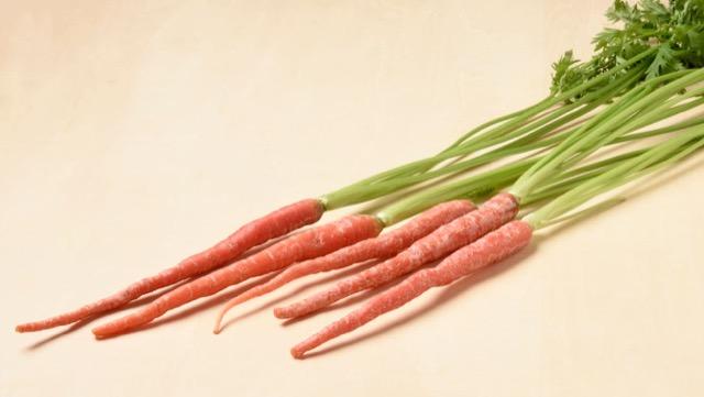 京かんざしは、実も葉も丸ごと食べられる