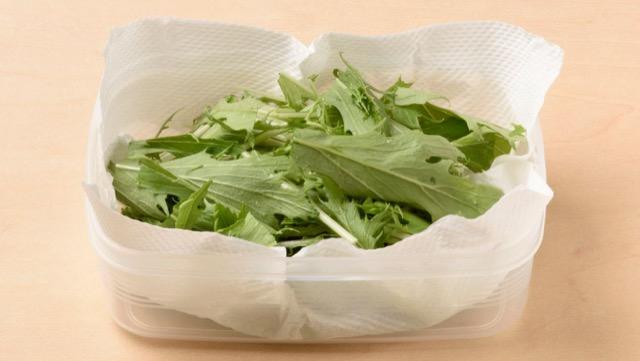 水菜は切ってキッチンペーパーを敷いた保存容器に入れ、冷蔵室で保存