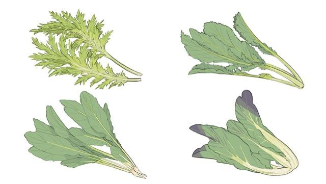 わさび菜などピリッと辛い葉菜の種類や選び方と、食べ方をご紹介