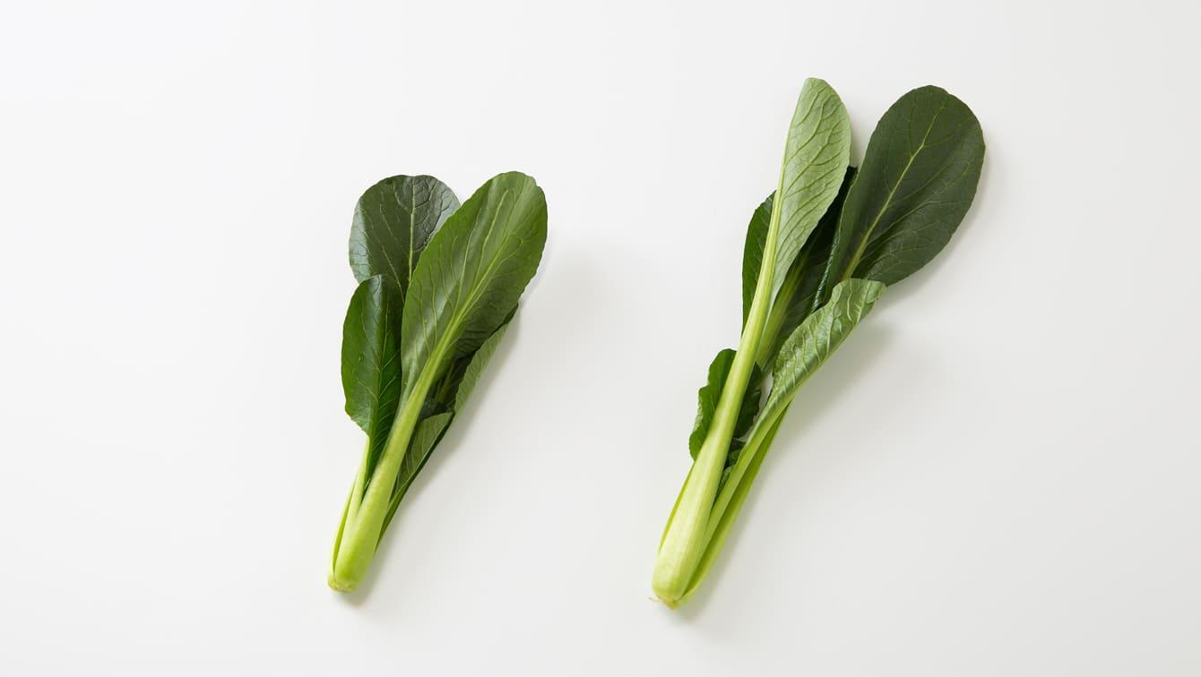 [小松菜]洗い方や茹で方と、みずみずしさを長持ちさせる保存法 ...