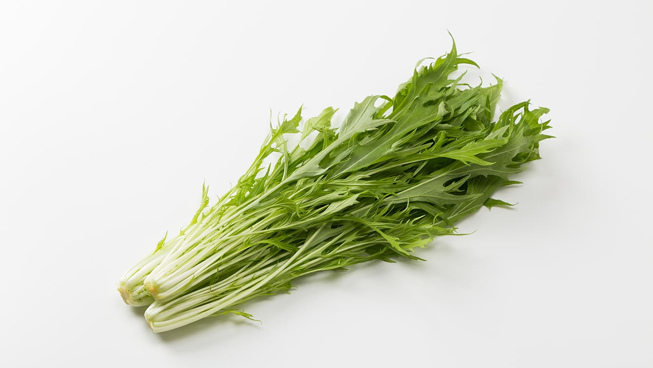 [水菜]サラダや鍋に活躍!栄養と鮮度をキープする保存のコツ