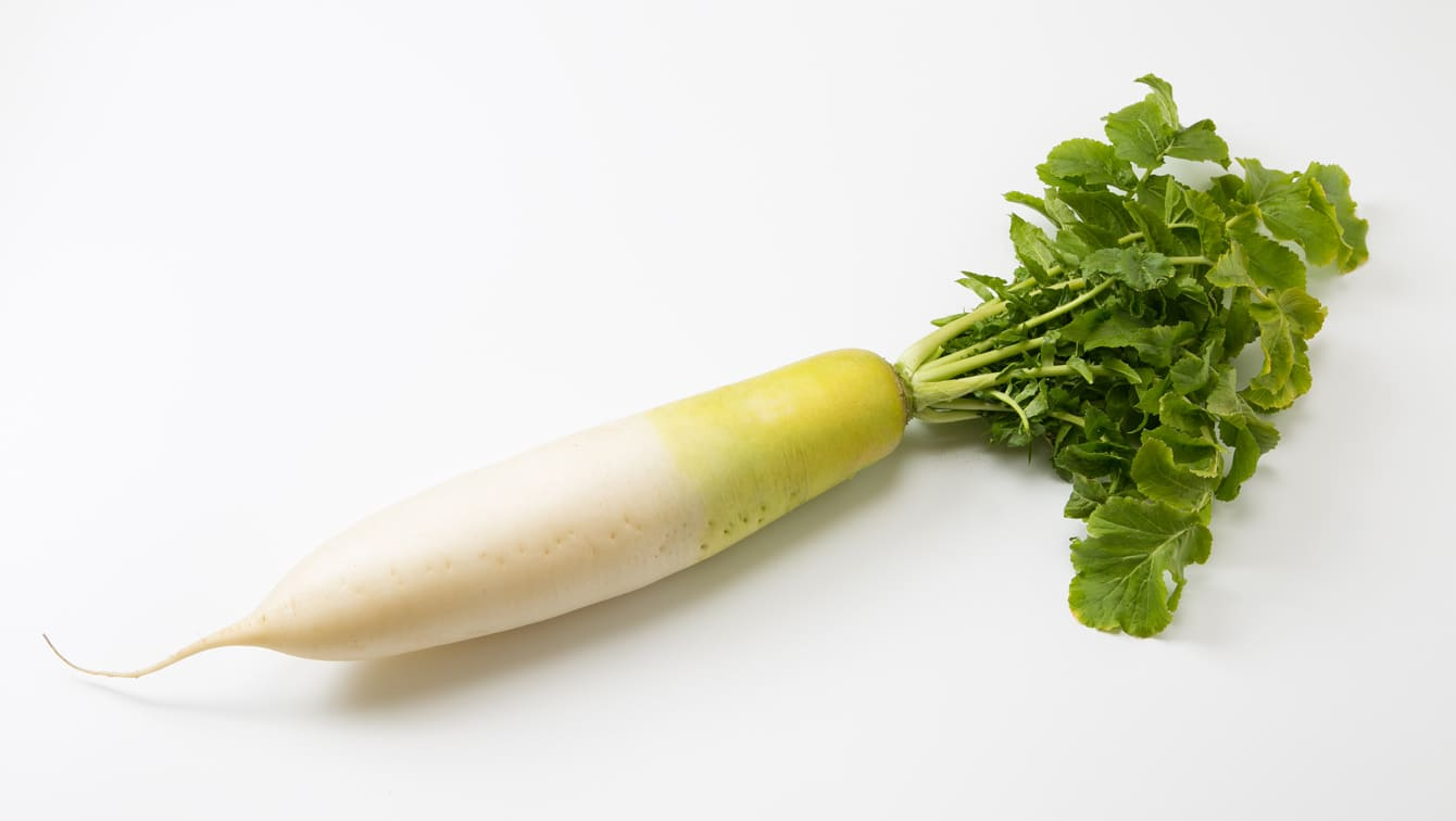 [Daikon]滋补!如何保存萝卜