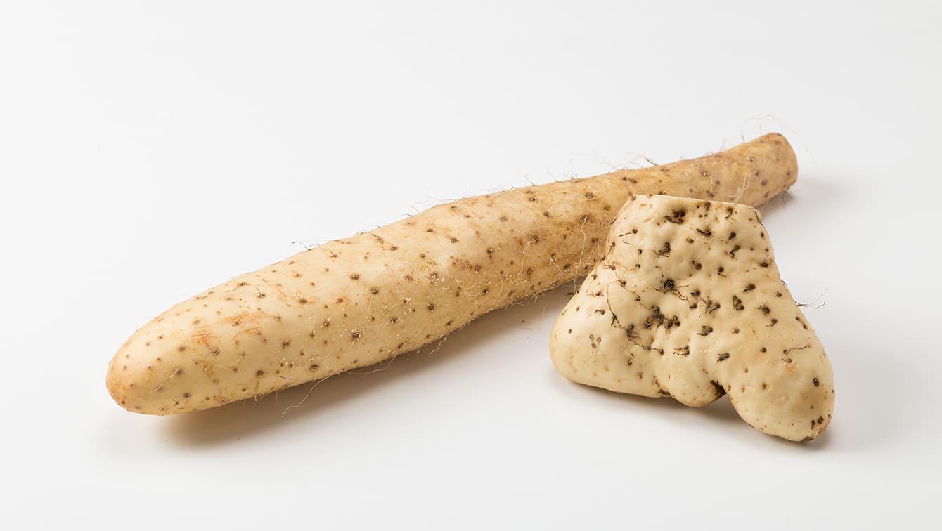 [山芋]長芋や大和芋の特徴と、栄養や下ごしらえ&保存のコツ